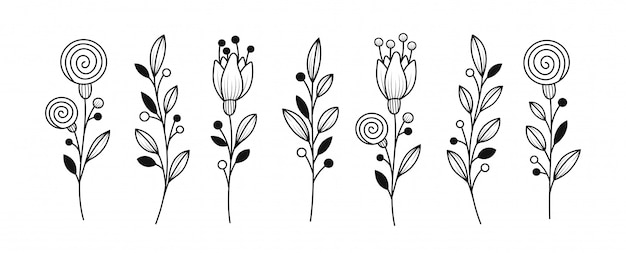 Conjunto de elementos botânicos Vetor Premium