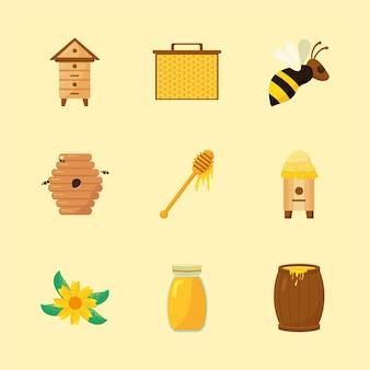 Conjunto de elementos de apicultura