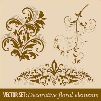 Conjunto de elementos de design de decoração de caligrafia e página