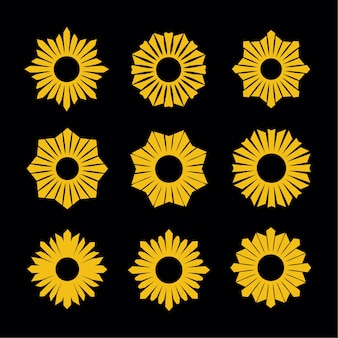 Conjunto de elementos de design de flor sunburst