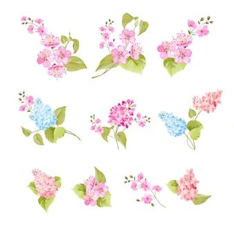 Conjunto de elementos de flores sakura e lilás
