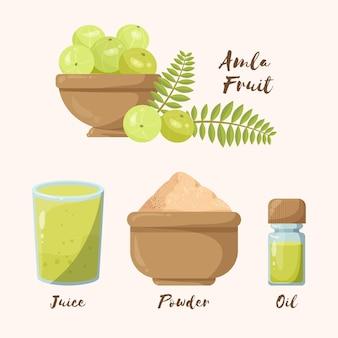 Conjunto de elementos de frutas amla desenhados à mão