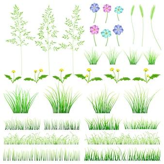 Conjunto de elementos de grama verde. arbustos, dentes-de-leão, flores e espigas em fundo branco