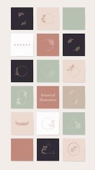 Conjunto de elementos de ilustração botânica
