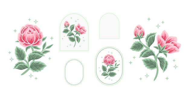 Conjunto de elementos de logotipo floral vintage beleza feminina peônia rosa com moldura para mulheres