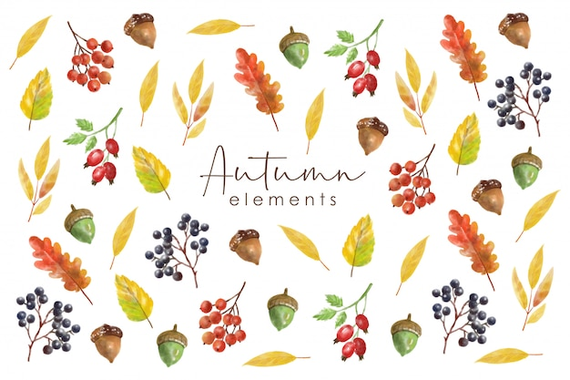 Conjunto de elementos de outono em aquarela, objeto de coleção de floresta, folhas coloridas, baga, nozes, cogumelo e abóbora, efeito de aquarela