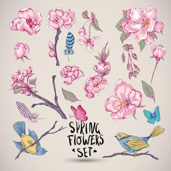 Conjunto de elementos de primavera natureza