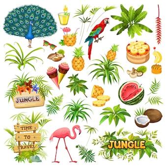 Conjunto de elementos de selva.