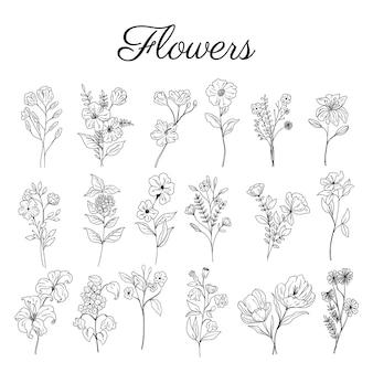 Conjunto de elementos decorativos florais botânicos desenhados à mão