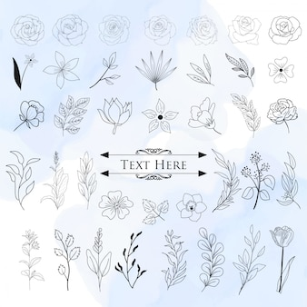 Conjunto de elementos decorativos florais de mão desenhada