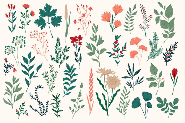 Conjunto de elementos decorativos florais desenhados à mão, folhas, flores, ervas e ramos rabiscos botânicos
