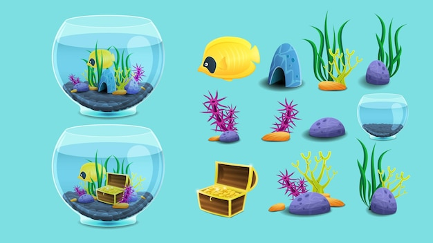 Conjunto de elementos do aquário.