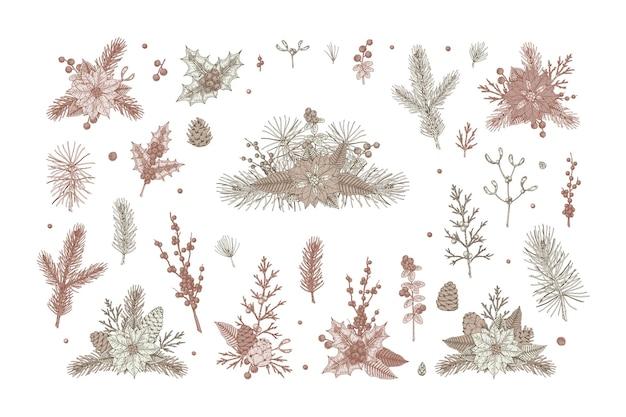 Conjunto de elementos e composições florais de natal