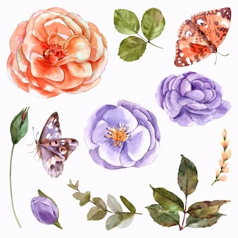 Conjunto de elementos em aquarela de jardim de coleção de flores