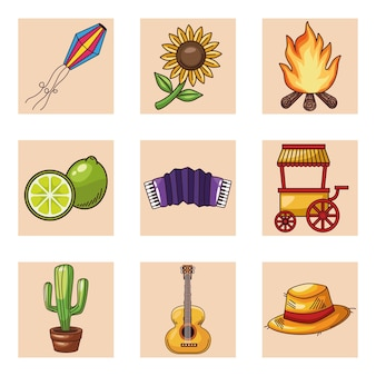 Conjunto de elementos festa junina