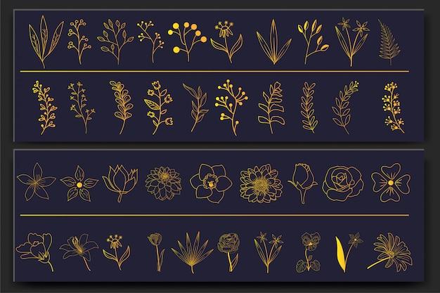 Conjunto de elementos florais de mão desenhada
