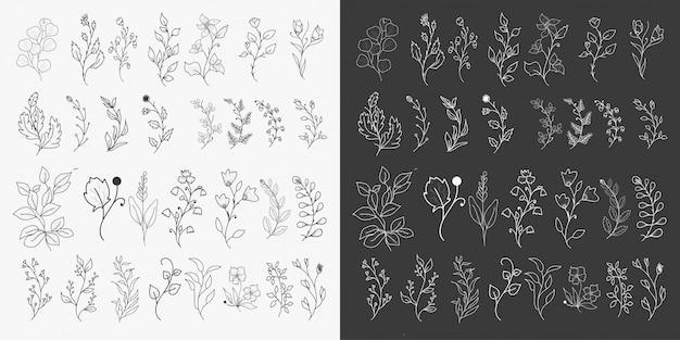 Conjunto de elementos florais desenhados à mão