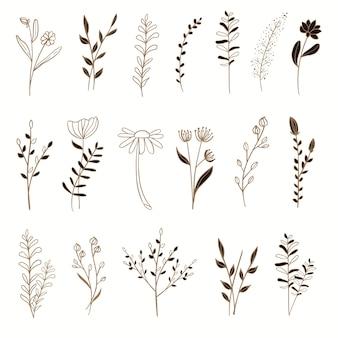 Conjunto de elementos florais dourados com ilustração de estilo desenhado à mão