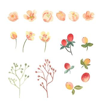 Conjunto de elementos florais e folhas em aquarela