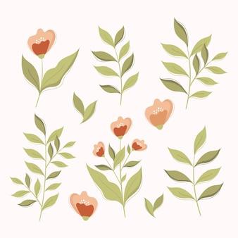 Conjunto de elementos florais. elementos botânicos desing.