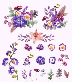 Conjunto de elementos florais em aquarela
