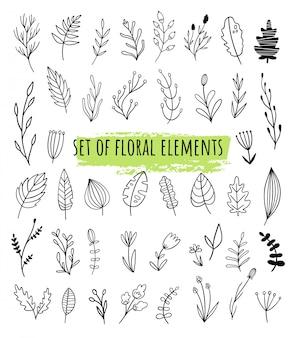 Conjunto de elementos florais vetoriais em doodle, estilos de linha. espécies de plantas diferentes