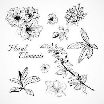 Conjunto de elementos florais