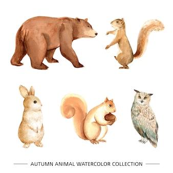 Conjunto de elementos isolados de aquarela animal