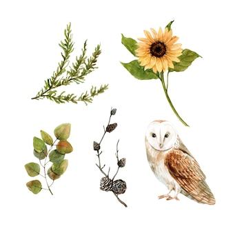 Conjunto de elementos isolados de aquarela outono