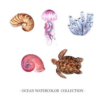 Conjunto de elementos isolados do oceano em aquarela