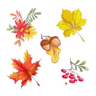 Conjunto de elementos naturais de outono.