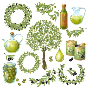 Conjunto de elementos orgânicos azeitona