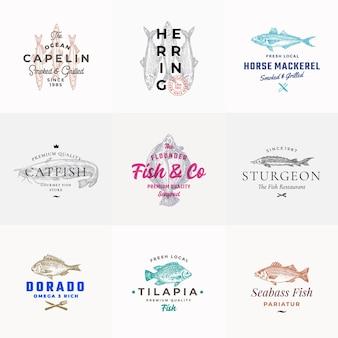 Conjunto de emblemas de frutos do mar de qualidade premium