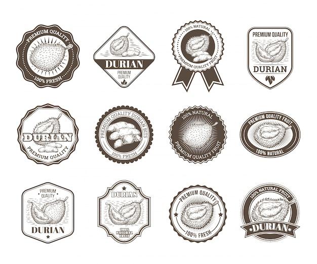 Conjunto de emblemas vetoriais em preto e branco, adesivos, sinais de alta qualidade, com fruta durian