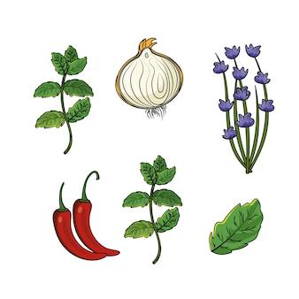 Conjunto de ervas e especiarias plantas e alimentos para órgãos