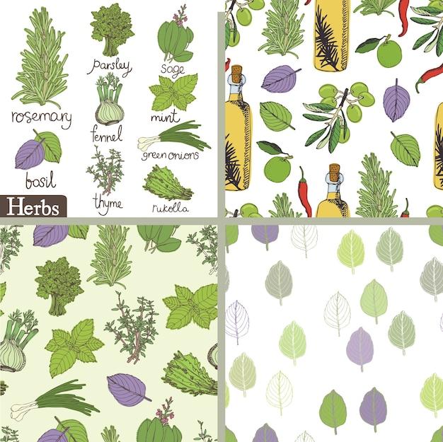 Conjunto de ervas e especiarias