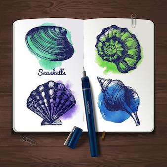 Conjunto de esboço desenhado de mão e conchas em aquarela. papel de caderno em fundo de madeira. ilustração vetorial