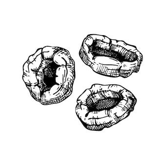 Conjunto de esboços de frutas secas de damasco desenhado à mão. damascos desidratados vintage em estilo gravado. sobremesa deliciosa fruta saudável. ilustrações realistas de doces orientais.