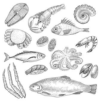 Conjunto de esboços de frutos do mar Vetor grátis