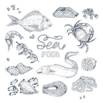 Conjunto de esboços monocromáticos de frutos do mar