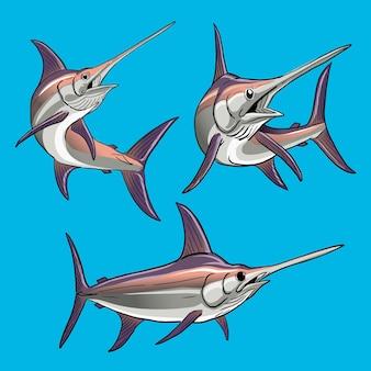 Conjunto de espadarte para coleta de pacote de peixes esportivos