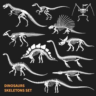 Conjunto de esqueletos de dinossauros