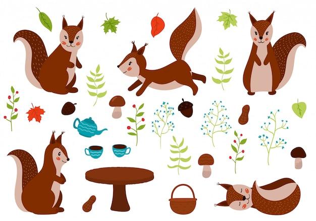 Conjunto de esquilos de mão desenhada.