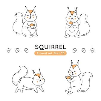Conjunto de esquilos doodle em várias poses isolados