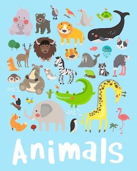 Conjunto de estilo de desenho ilustração da vida selvagem