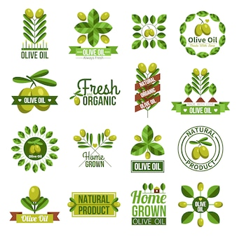Conjunto de etiqueta de azeite natural orgânico