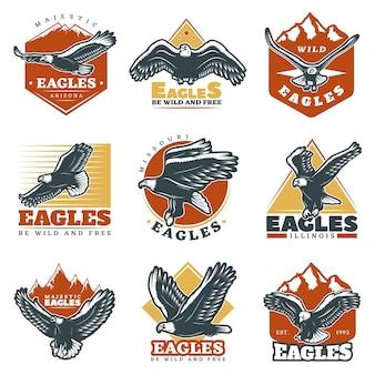 Conjunto de etiquetas coloridas vintage de águias bonitas