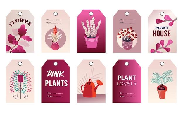 Conjunto de etiquetas de plantas domésticas