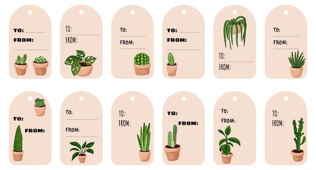 Conjunto de etiquetas de presente de plantas suculentas em vaso hygge. coleção de rótulos de estilo escandinavo aconchegante lagom