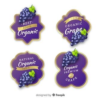 Conjunto de etiquetas de uva orgânica realista